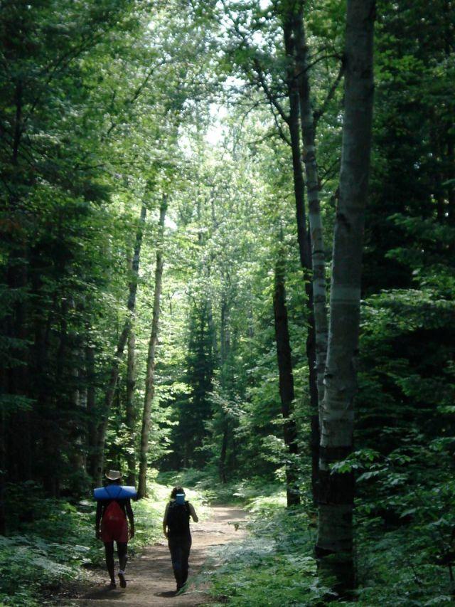 b&c walking in woods