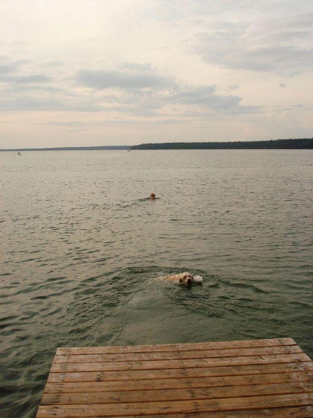 ws in lake