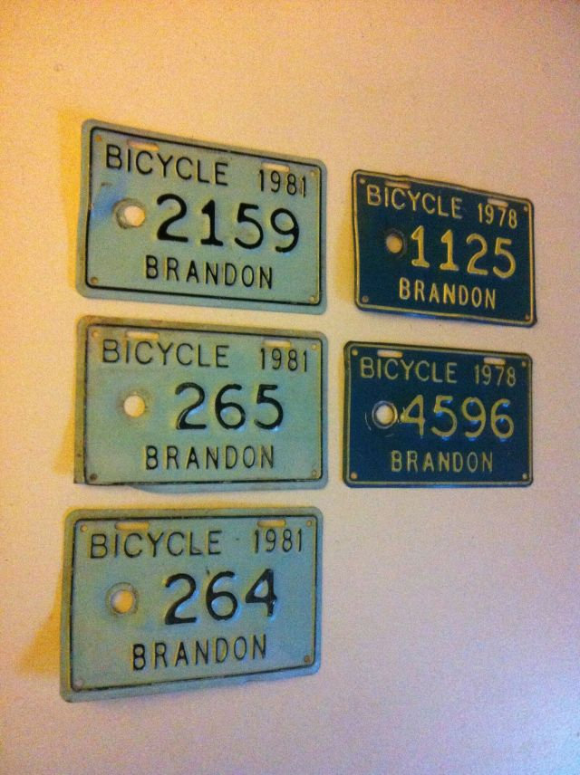 bicycle license